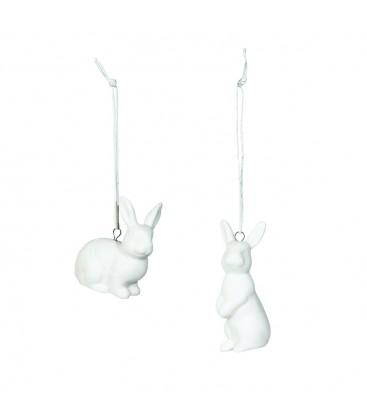 Kanin vit (2p)